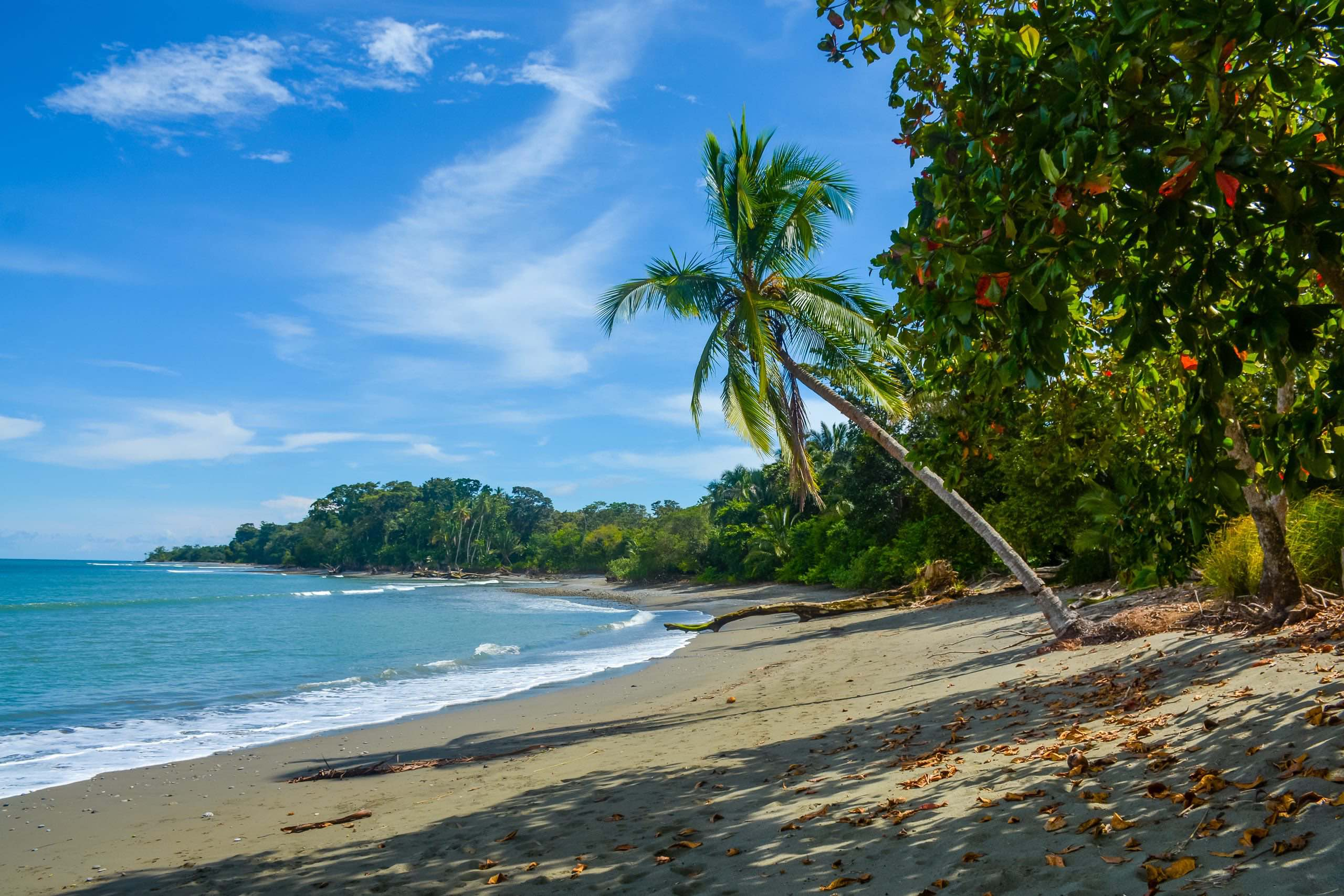 Wellness Retreats in Costa Rica