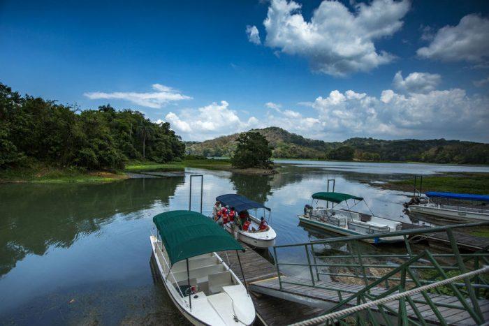 From Panama City: 5-Hour Eco-Cruise on Gatun