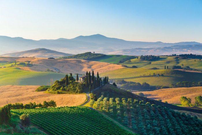 Chianti Authentic Wine Tasting Experience