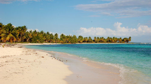 Full-Day Saona Island Excursion