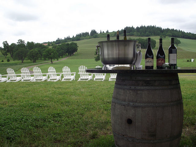 5-Hour Willamette Valley Wine Tour with Tastings