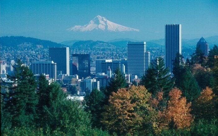 Full-Day Portland City & Oregon Wine Tasting Combo Tour