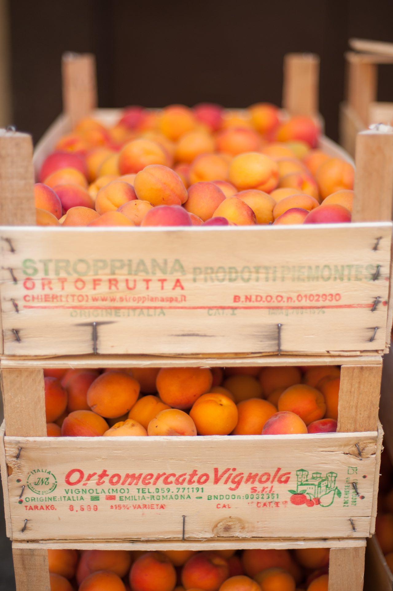 Italian Apricots