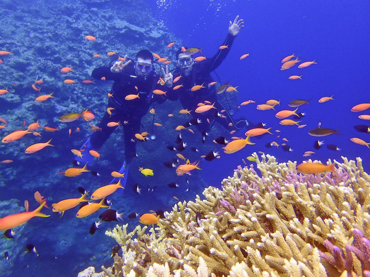 Diving Yaeyama Islands Japan