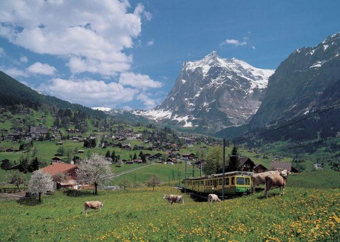 From Zürich: Day Trip to Grindelwald & Interlaken