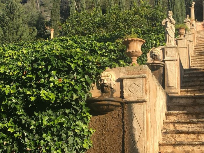 Mallorca Winery Tour