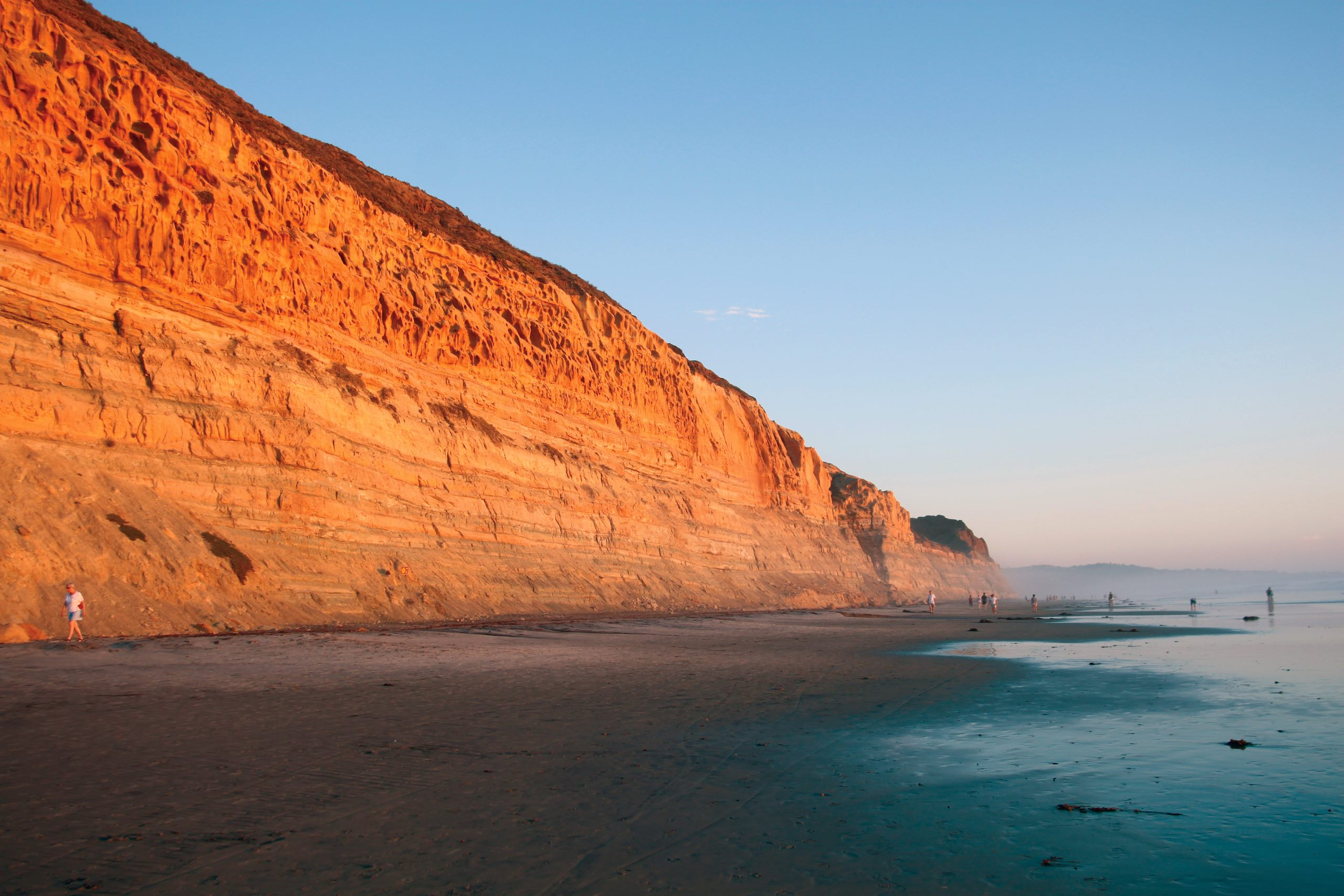 Torrey Pines | Photo: Annie Pearson