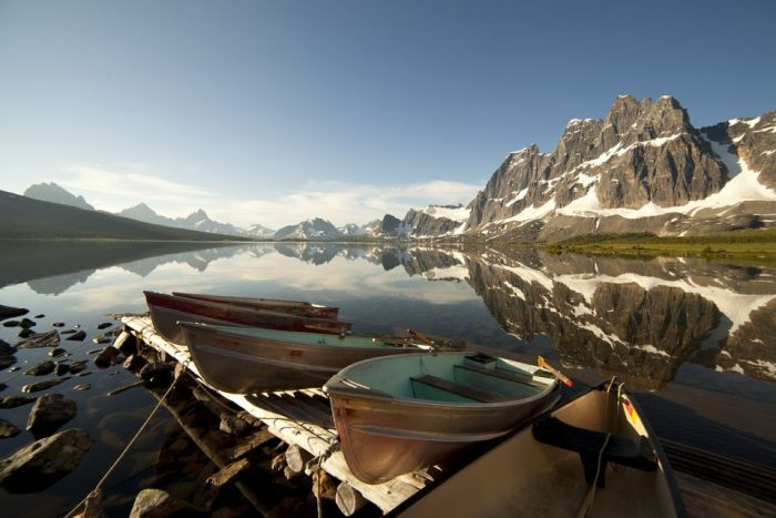 Lake Louise to Jasper One-Way Tour