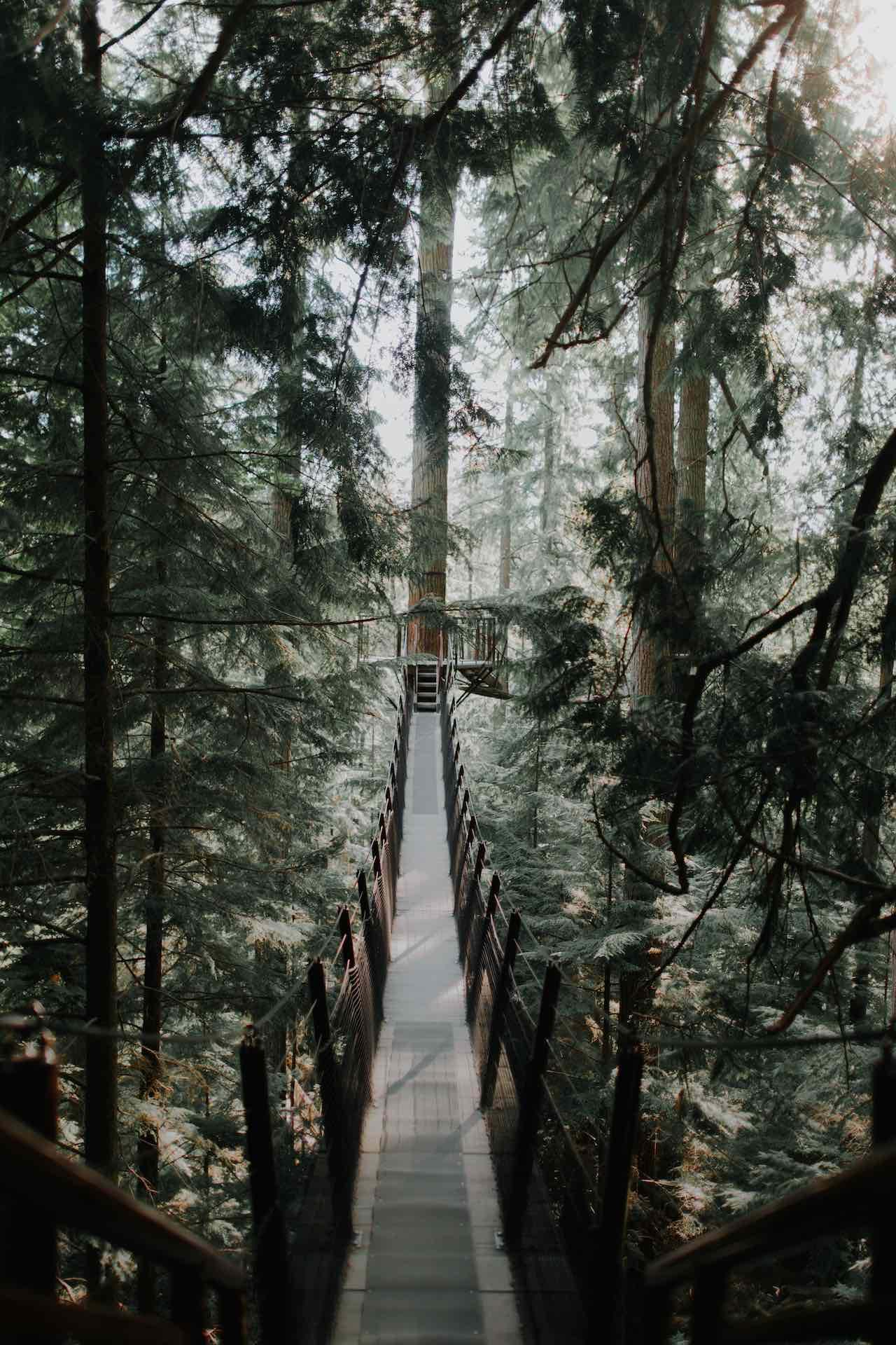 Capiliano Suspension Bridge West Vancouver-Canada