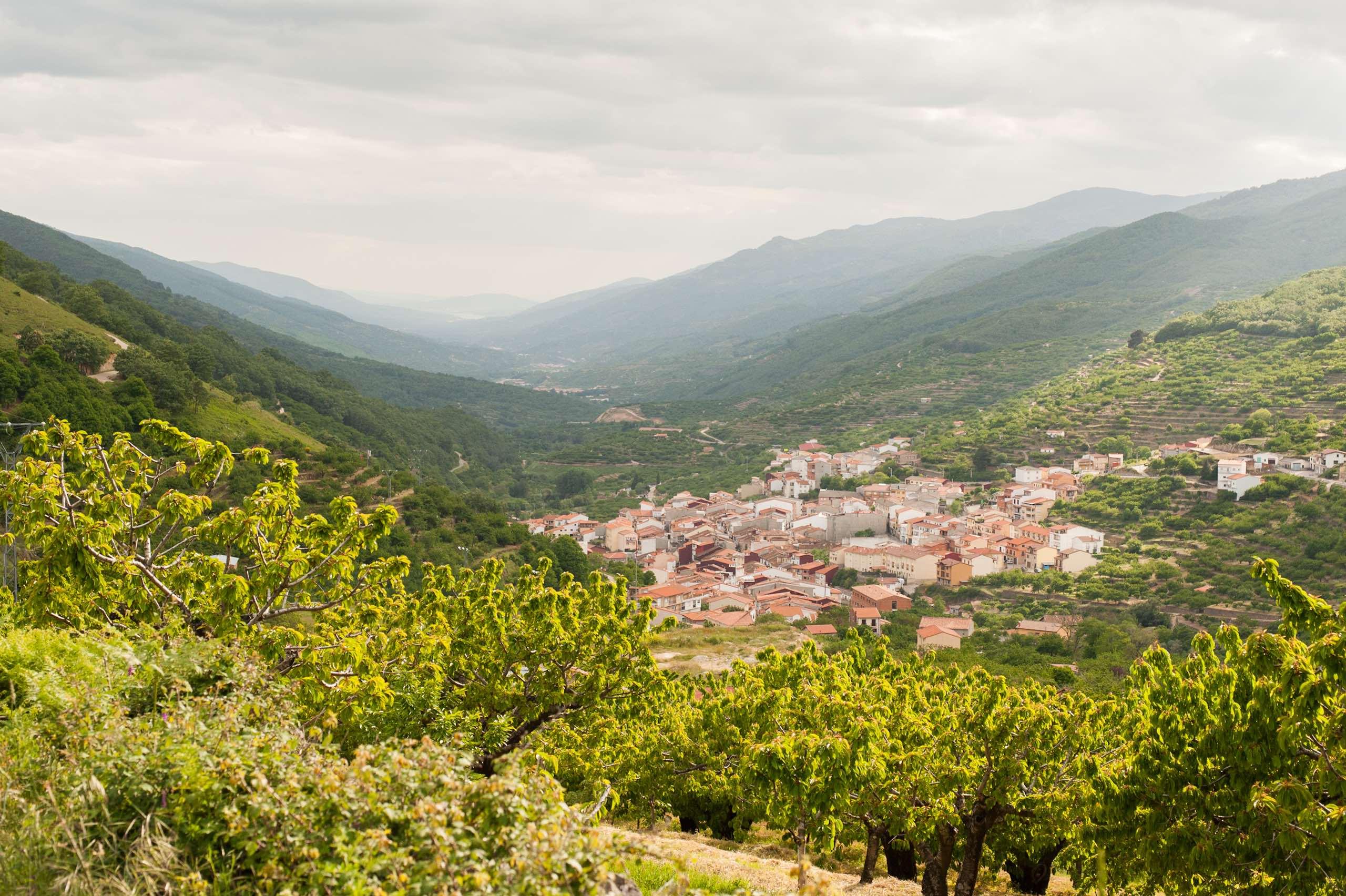 Valle del Jerte Spain