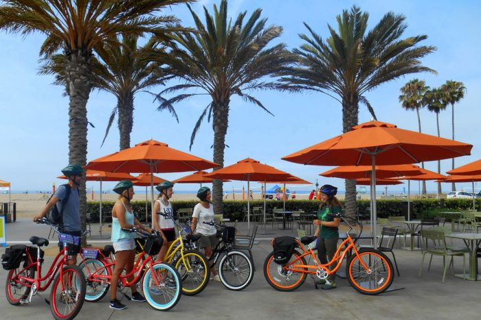Santa Monica and Venice 3-Hour Electric Bike Tour