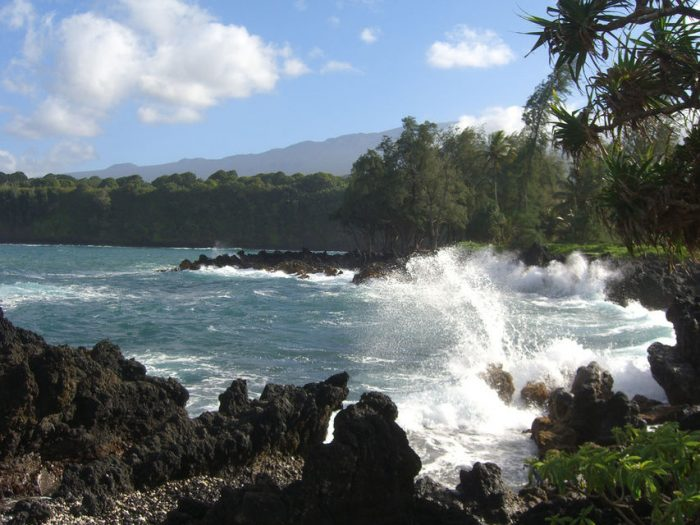 Full-Day Sightseeing Tour of the Road to Hāna