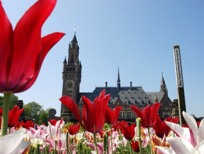 Rotterdam, Delft & The Hague: Full-Day Small-Group Tour