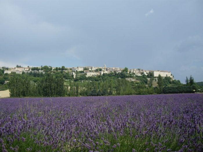 Lavender Tour to Sault Roussillon Gordes from Marseille