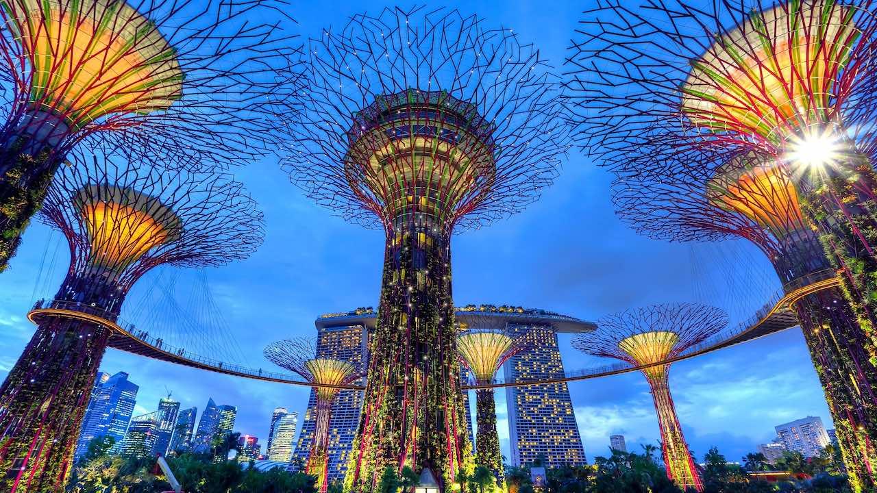 Supertrees | Photo: Duy Nguyen