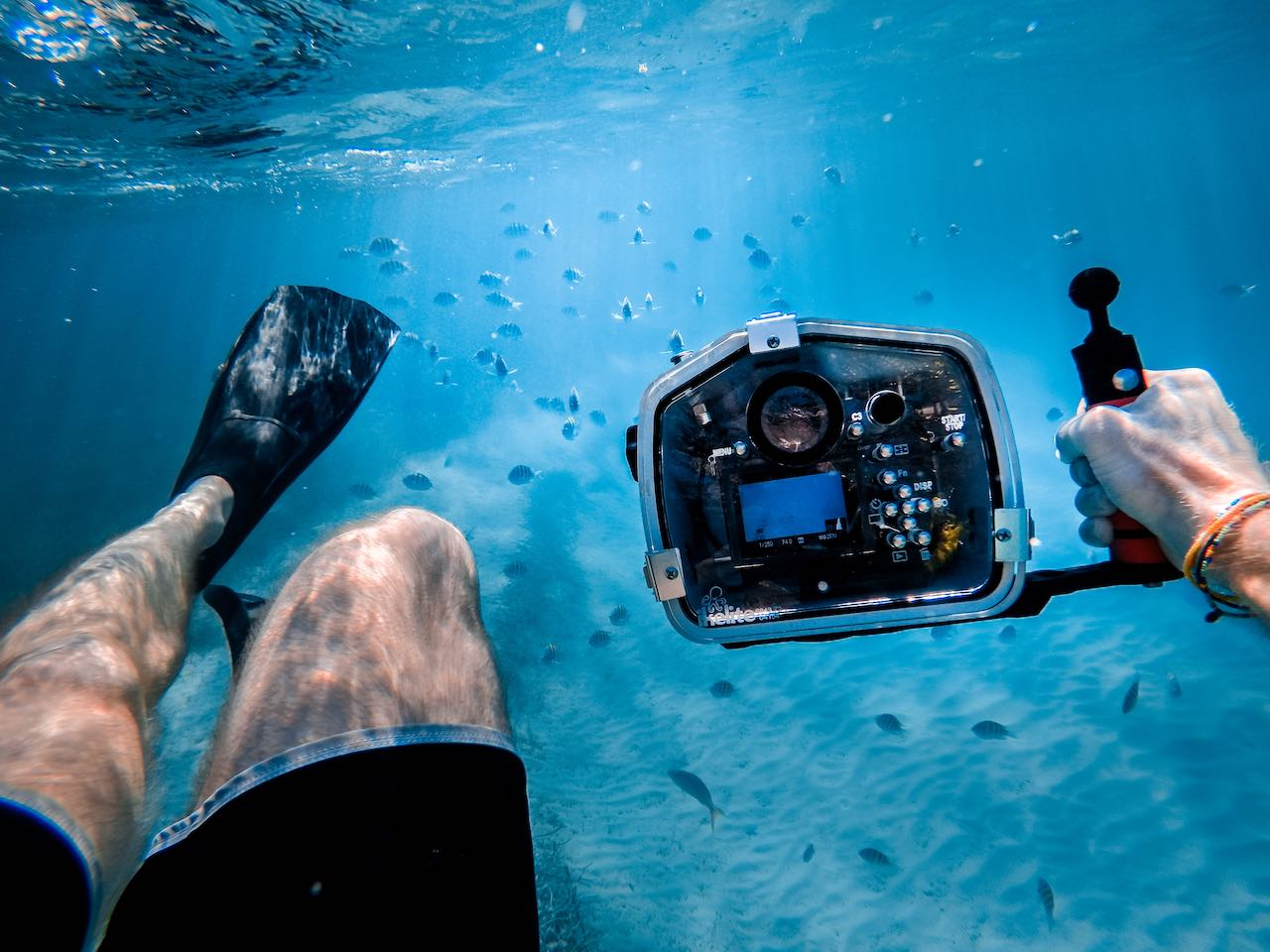 diver taking pictures