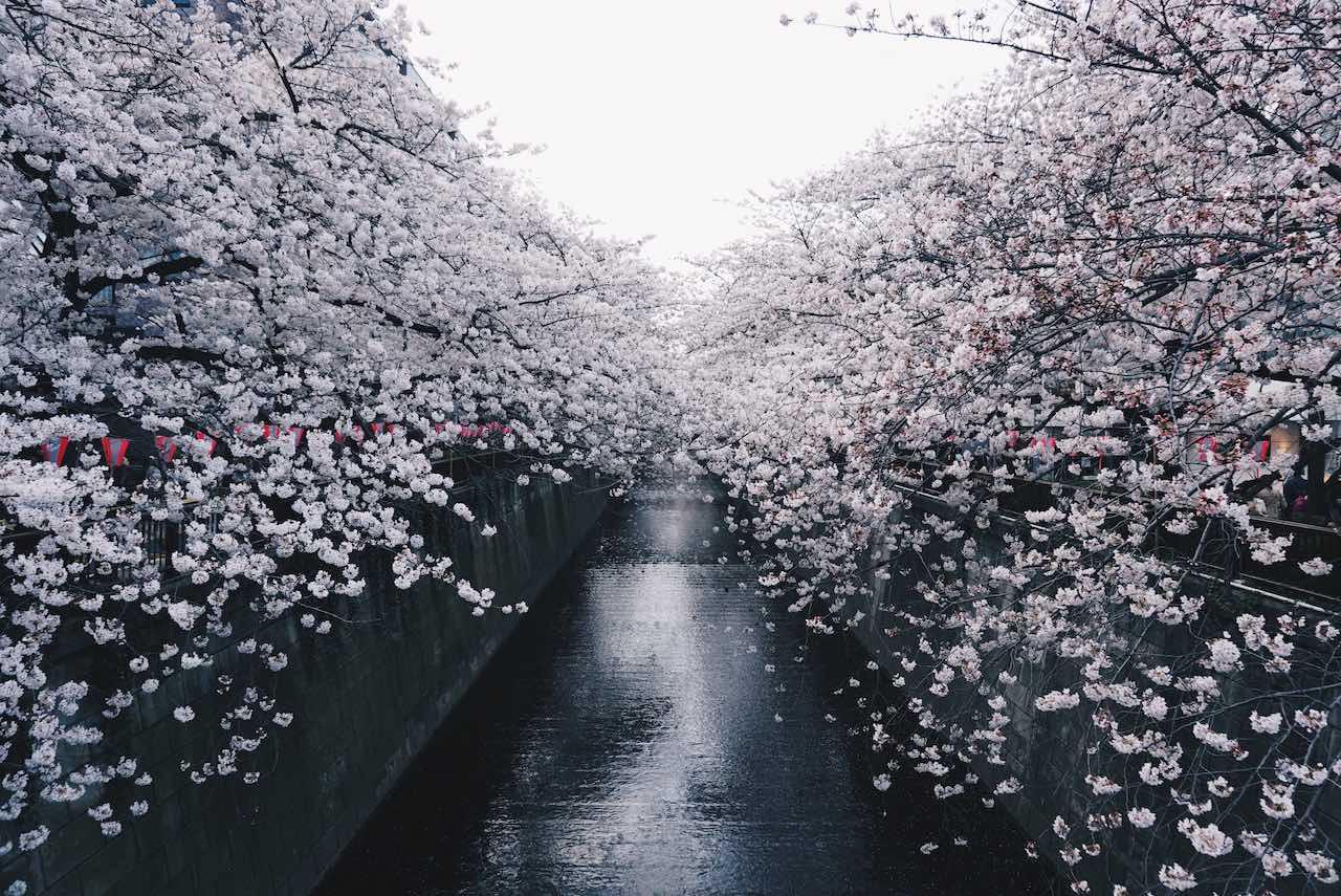 Nakameguro Tokyo