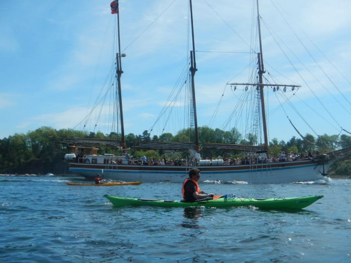 3-hour Kayaking Trip on the Oslofjord