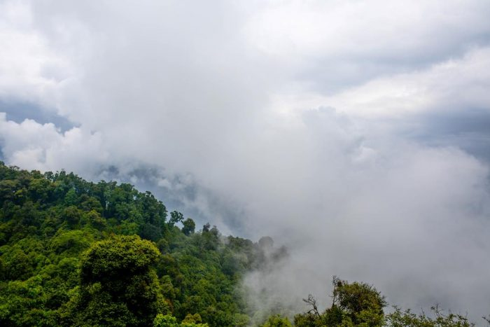 Cross Countries Tour of Bhutan, Sikkim & Dharjeeling