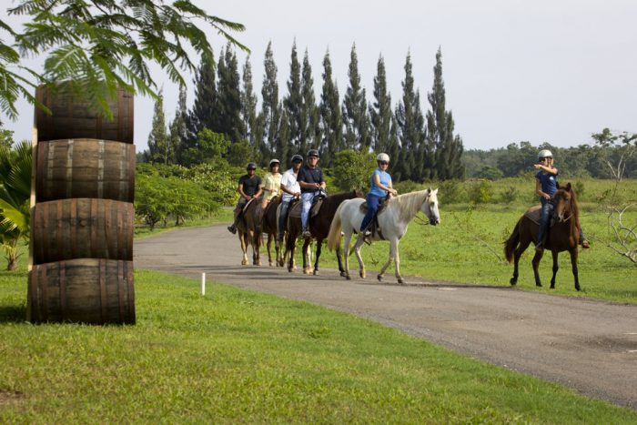 From San Juan- Horse Riding at a Private Ranch