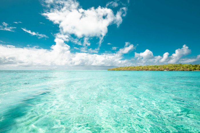 Mauritius: Discover the South East Lagoon by Speedboat