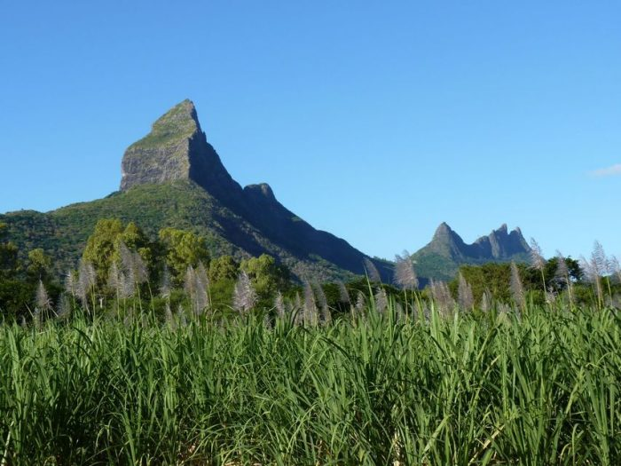 Mauritius: Wild South West Full-Day Public Tour