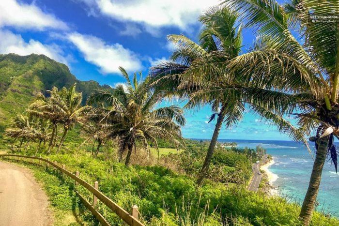 Oahu 120-Mile Full-Day Tour Including Dole Plantation