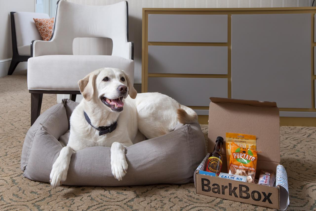 The Benjamin NYC Barkbox